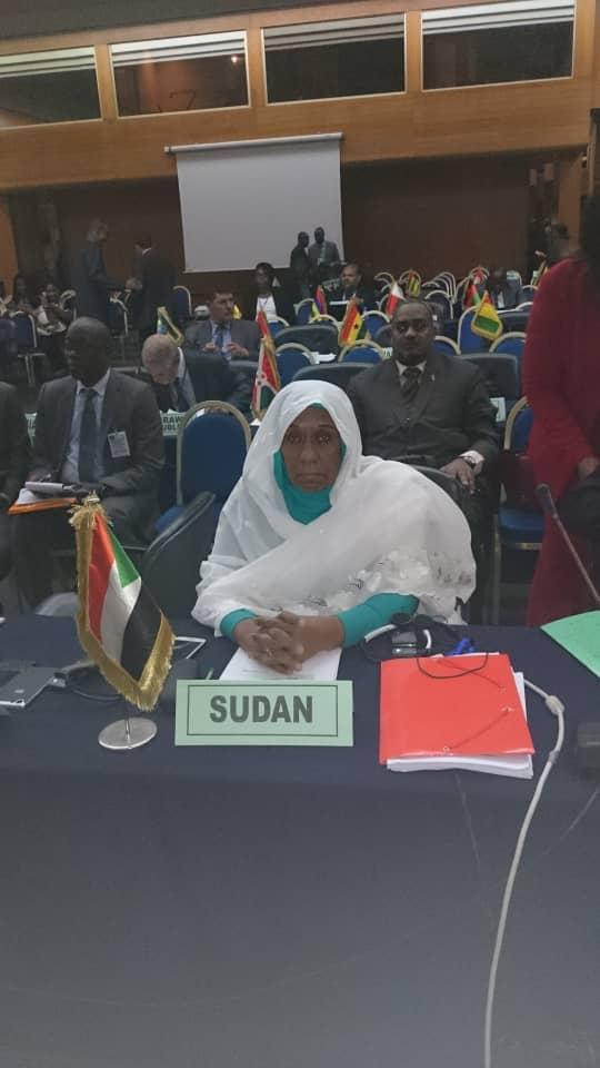 وزير الدولة تترأس وفد السودان المشارك في اجتماعات الدورة الطارئة رقم (3) في السنقال